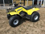 Suzuki 160 Quad Runner ATV & Quad